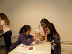 Jiahui, Advaita and Linnea demonstrate perfect filtration.